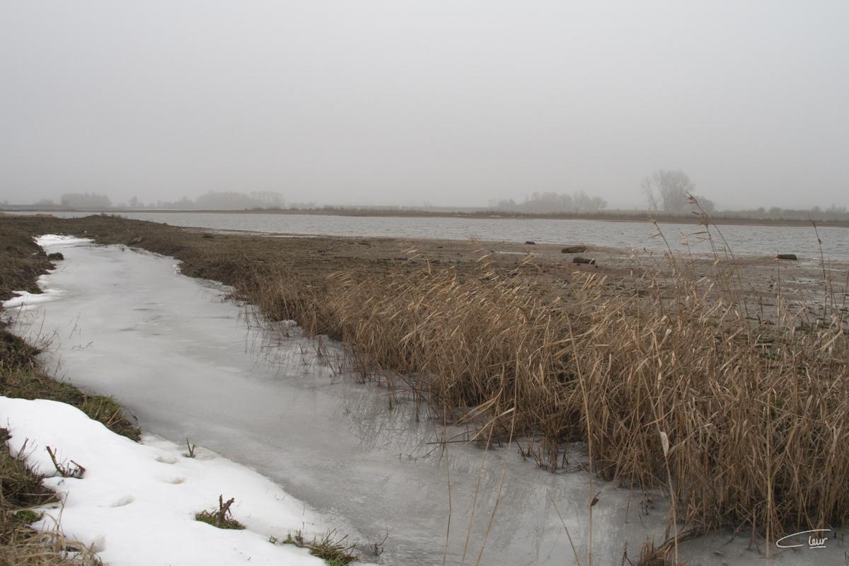 ijs en sneeuw in de Vreugderijkerwaard bij Zwolle