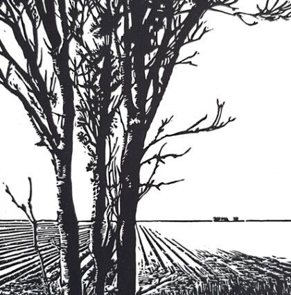 linoleumsnede 'Middendijk'