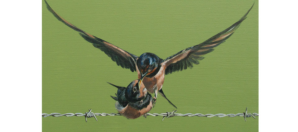 tweeluik Zwaluwen
