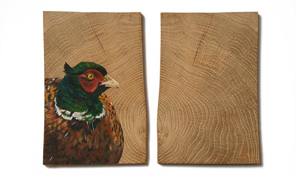vogelhoutje fazant